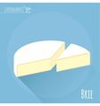Brie cheese icon vector image vector image