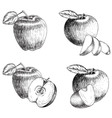 Set of hand drawn apple Vintage sketch style vector image vector image
