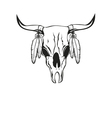 skull bull with feathers vector image