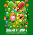 diet vegan fruits and natural vitamins food vector image vector image