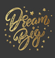 dream big lettering phrase isolated on dark vector image vector image
