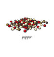 pile of black red and green pepper peppercorns vector image