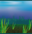 seabed with seaweed vector image vector image