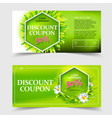 spring and summer sale coupon vector image vector image