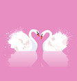 a pair of swans with watercolor splashes vector image vector image