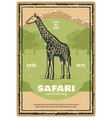 african safari retro banner with giraffe animal vector image vector image