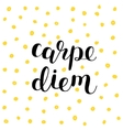 Carpe diem Seize the day Brush lettering vector image