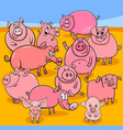 cartoon pigs farm animal characters group vector image vector image