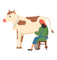 cattle farm animal woman milking cow farm vector image vector image