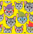 colorful seamless pattern with cats in hats and vector image vector image