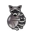 Cute cartoon raccoon isolated vector image vector image