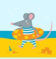 rat in lifebuoy vector image vector image