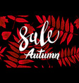 red autumn sale background hand drawn autumn vector image