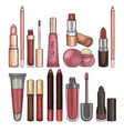 types of lipsticks and lip glosses vector image vector image