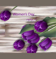 ultra violet tulip flowers realistic women vector image