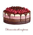 delicious cake with raspberries vector image