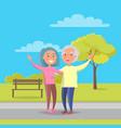happy grandparents day senior couple walk together vector image