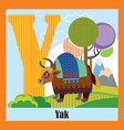 animal alphabet y