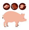 butcher concept vector image vector image