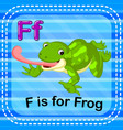 flashcard letter f is for frog vector image vector image