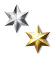 golden and silver stars vector image