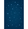 night starry background vector image vector image
