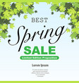 spring discount background vector image vector image