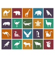 wild animals and birds icons set vector image
