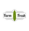 organic and fresh product design vector image vector image