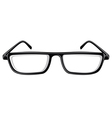Reading Glasses vector image