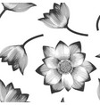 seamless pattern with realistic lotus vector image