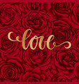 love hand drawn brush pen lettering on background vector image