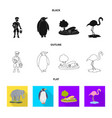 isolated object of nature and fun logo collection vector image