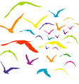 Seamless with colored birds vector image