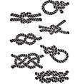 set knots vector image