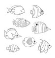 tropical fish icon set isolated triggerfish vector image vector image