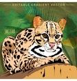 Wild Cats Jaguar vector image vector image