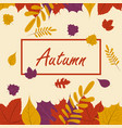 autumn season fall leaf web banner or poster vector image vector image