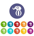 Elephant balancing on a ball set icons vector image