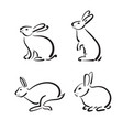 group hand drawn rabbit on white background vector image
