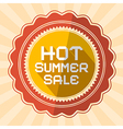 Hot Summer Sale Retro vector image vector image