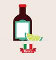 mexico design vector image vector image