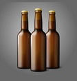 Three blank brown realistic beer bottles isolated vector image vector image