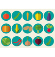 vegetable icon set The image of vegetables symbol vector image