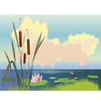 lake cane and lotuses vector image