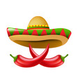 mexican chili pepper vector image