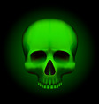 human skull isolated on black color green object vector image