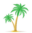 palm tree 14 vector image vector image