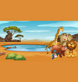 wild animals by the pond vector image vector image