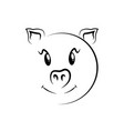 cute pig face vector image